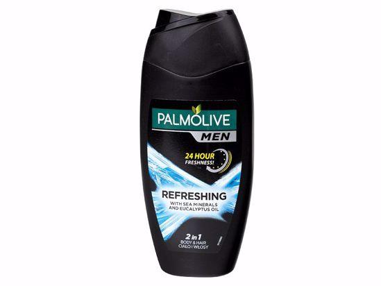 Obrázek Sprchový gel Palmolive pánský 250 ml